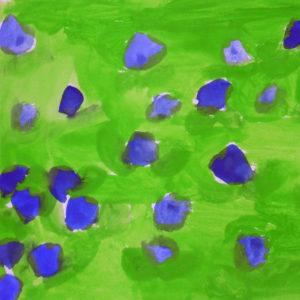 Blåbærli Kvadrat