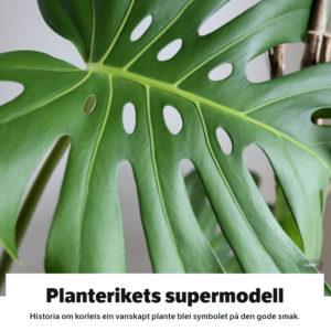 Planterikets Supermodell