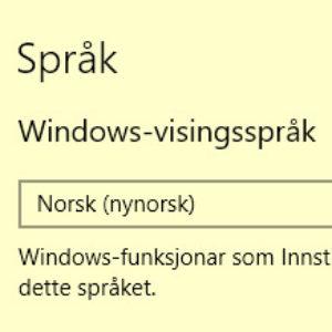 Windowsspraakval Ikon