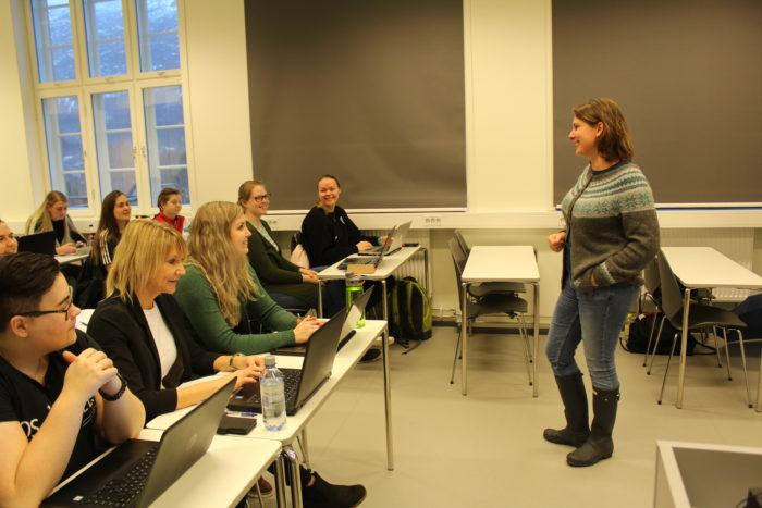 Kristin K Sjøhelle Undervisning